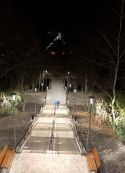 LED Світильник парковий ДТУ01-100W Terno
